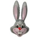 Заяц голова серая