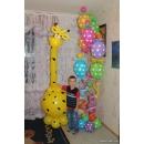 Комплект Поздравительный жираф